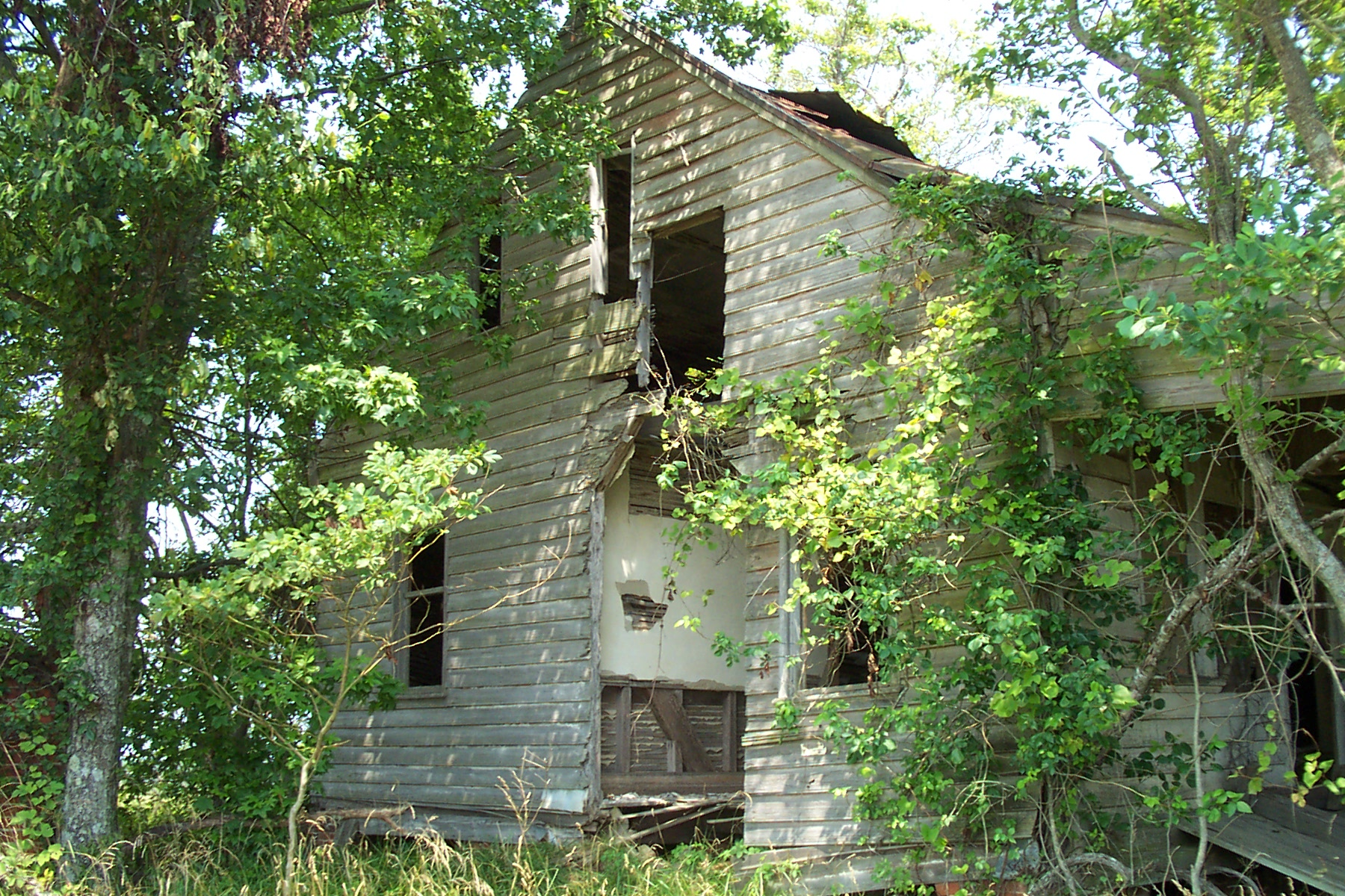 nat turner  the decaying remains of the whitehead house hidden away far from the modern road system